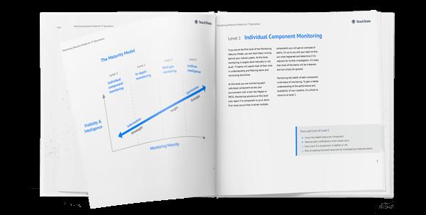 White paper monitoring maturity model